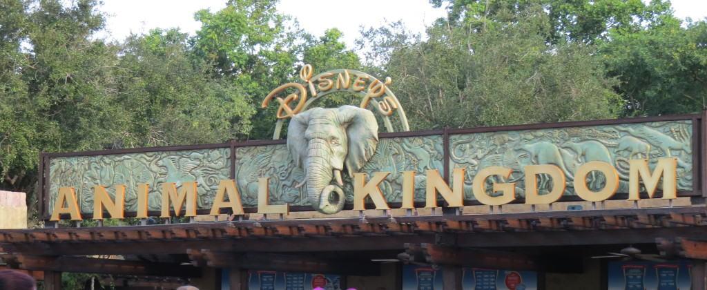 Animal Kingdom entrance ~ photo taken by T.M. Brown