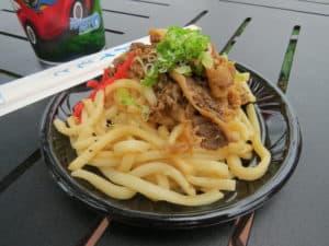 Beef Teriyaki Udon at Hanami in Japan ~ photo taken by T.M. Brown