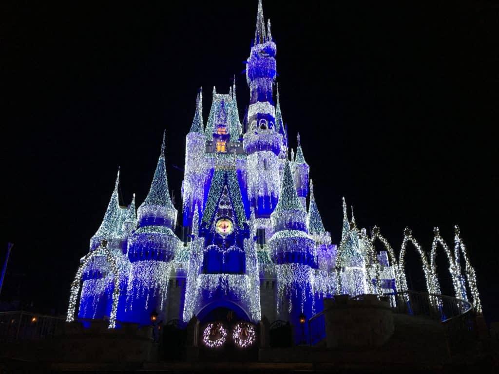 Cinderella Castle ~ photo taken by T.M. Brown