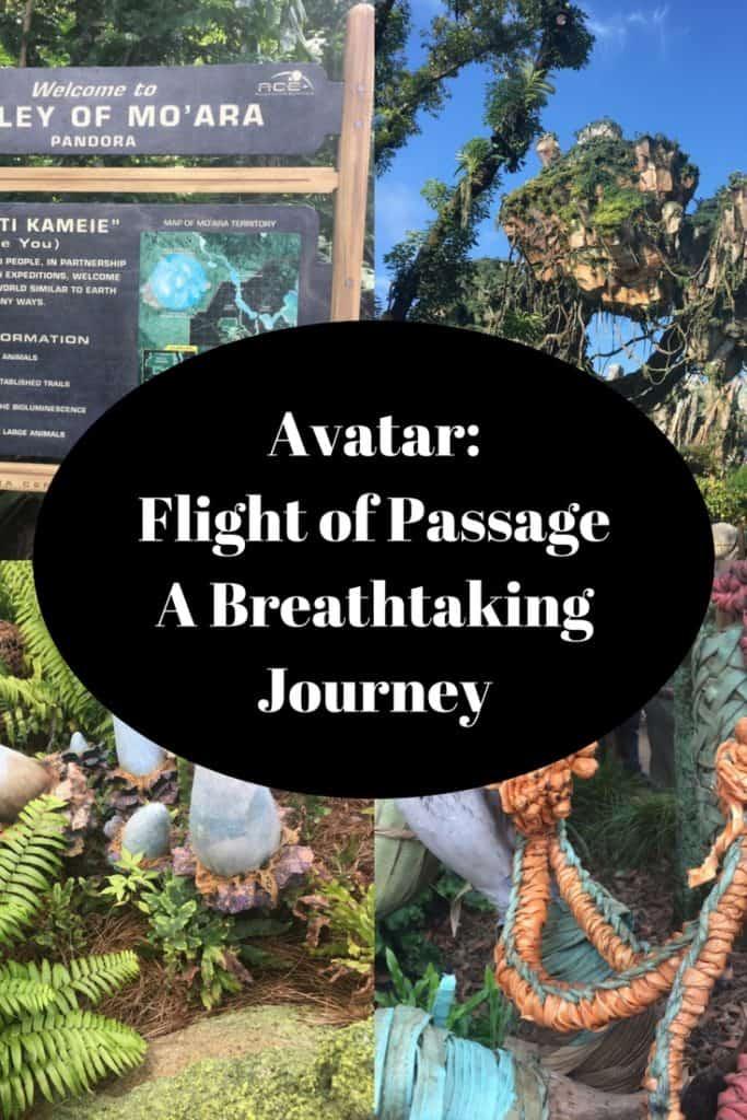 A Teen's perspective on Avatar: Flight of Passage