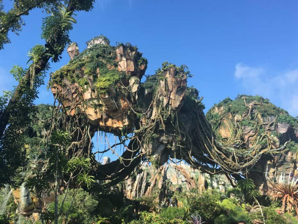 Floating Mountain at Disney's Animal Kingdom