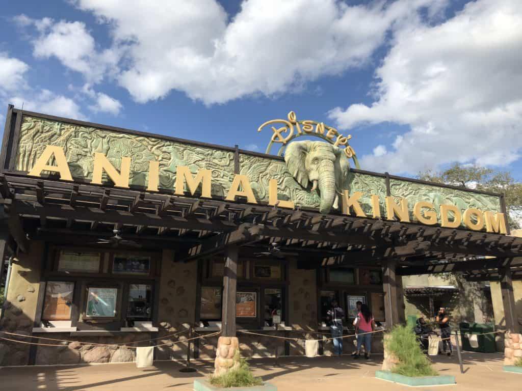Disney's Animal Kingdom entrance