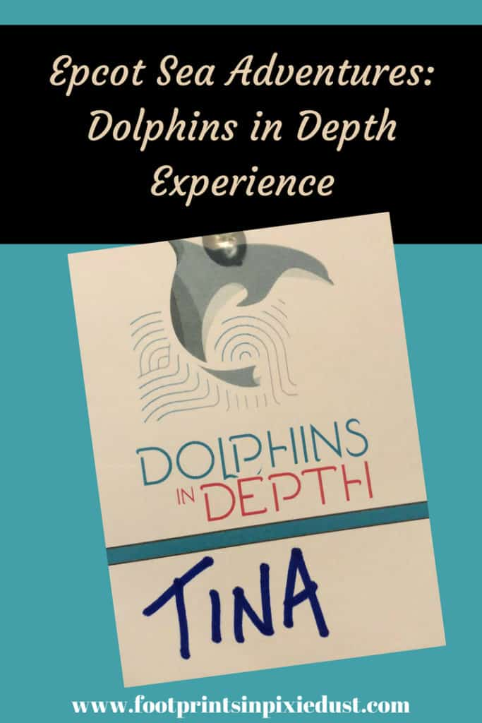 Epcot Sea Adventures: Dolphins in Depth ~ #epcot #wdwtours #disneyparks #travel #vacation #visitFL