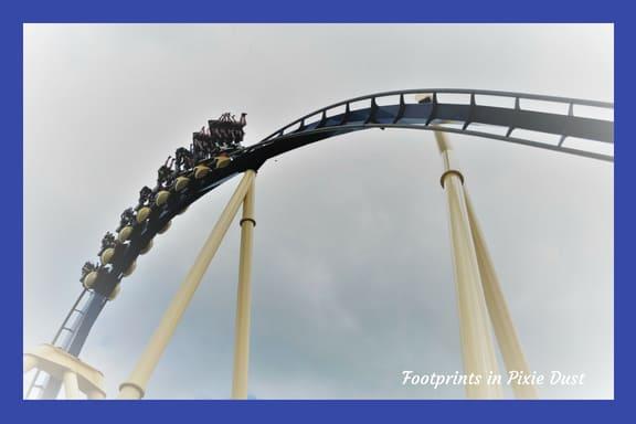 Montu roller coaster at Busch Gardens Tampa Bay
