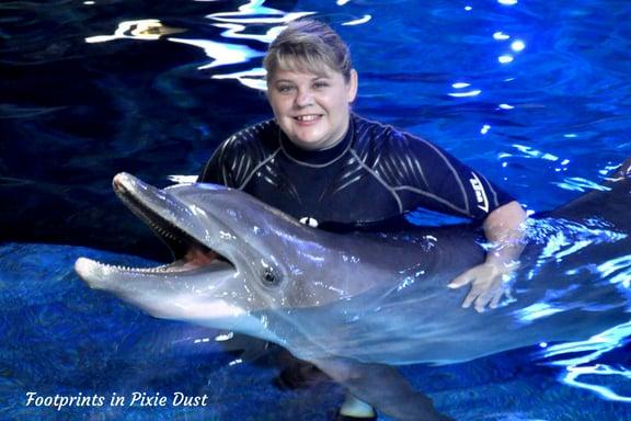 Epcot Sea Adventures: Dolphin encounter photo at Epcot