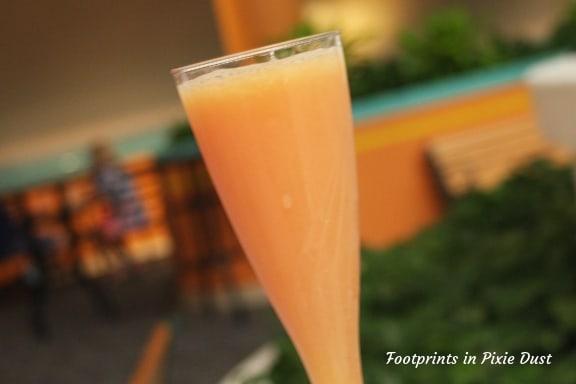Mimosa ~ Photo credit: Tina M. Brown