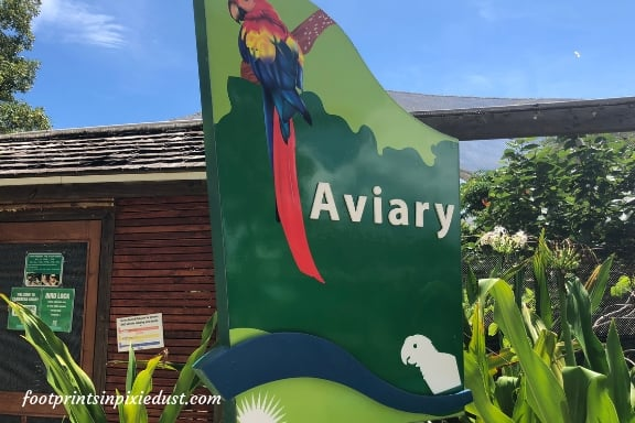 Aviary at the Cayman Turtle Centre ~ Photo credit: Tina M. Brown