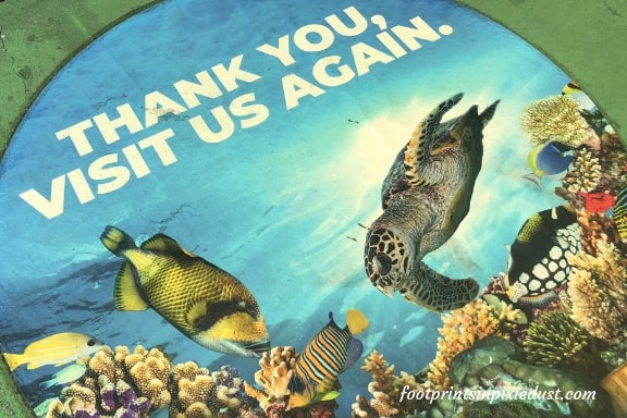 Cayman Turtle Centre Thank You For Visiting Sign ~ Photo credit: Tina M. Brown