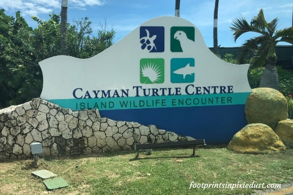Cayman Turtle Centre sign ~ Photo credit: Tina M. Brown