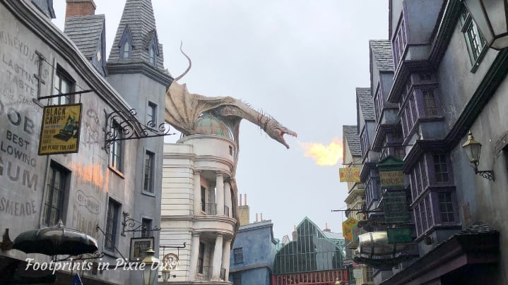 The Wizarding World of Harry Potter - Ukranian Iron Belly above Gringotts