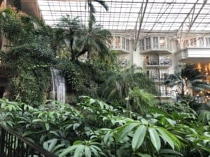 Gaylord Opryland Resort and Convention Center waterfall