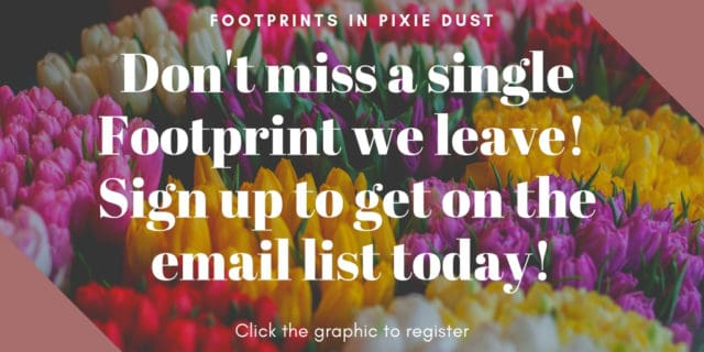 Picture of flowers - Subscribe to Footprints in Pixie Dust