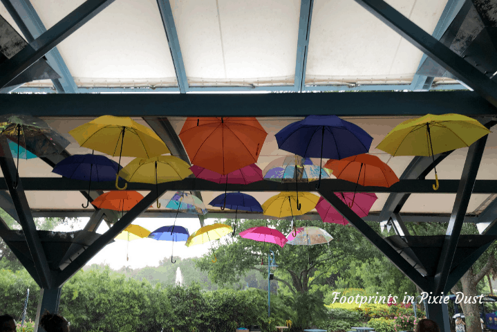SeaWorld Orlando ~ Taking cover during the storm