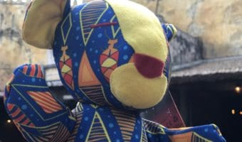 Protect the Pride Event ~ Disney's Plush Simba