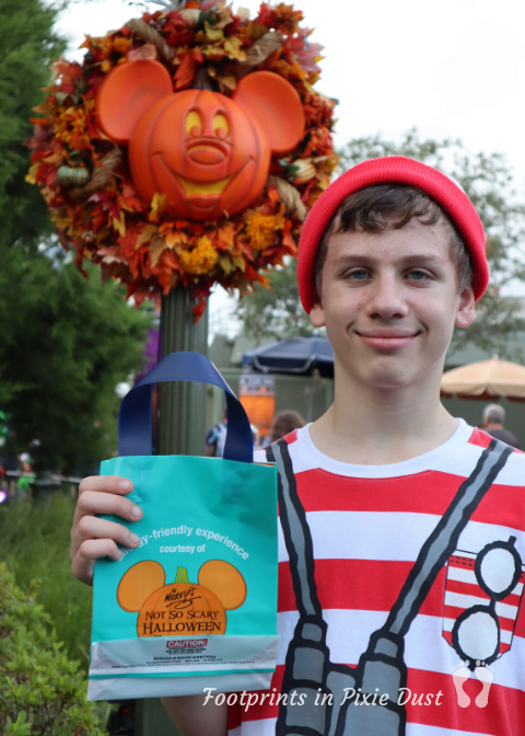 Enjoy Life, Disney and Halloween - Teal Bag in Hand
