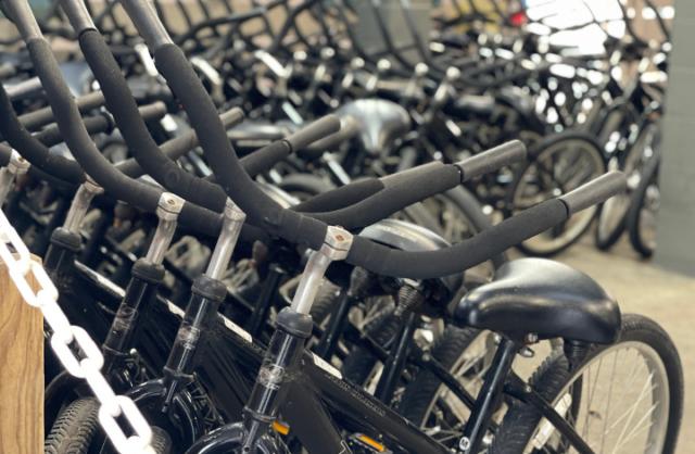 Disney's Hilton Head Island Resort - Rental Bikes